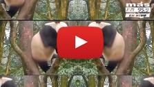 El Kuelgue estrena su video Chiste.